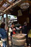 Kofoku籍寺庙奈良日本 免版税图库摄影