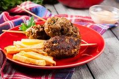 Kofta arrostito col barbecue con le fritture su un piatto Fotografia Stock Libera da Diritti