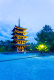 Kofuku-Ji Five Storied Pagoda Lighted Evening V Stock Image