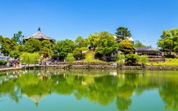 Kofuku-ji temple above Sarusawa-ike Pond in Nara. Japan Royalty Free Stock Photo