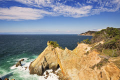 The Koganezaki Cape on the Izu Peninsula, Japan. The Koganezaki Cape (黄金崎) on the Izu Peninsula in Japan with Mount Fuji in the far distance royalty free stock images