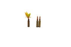 Kogels voor wapens met een installatie Royalty-vrije Stock Afbeelding
