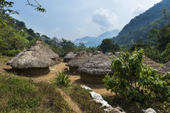 Kogi村庄在森林里在圣玛尔塔内华达山脉在哥伦比亚 免版税图库摄影
