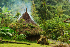 Kogi Hut in Colombia. Small kogi hut built in the traditional way of the Tayrona in the jungle of Northern Colombia. The roof of the hut has to be kept dry as it Royalty Free Stock Photos