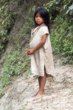 Kogi Indian Girl Stock Photo