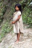 Kogi Indisch Meisje Stock Foto