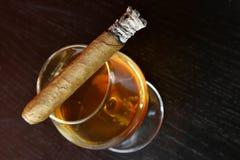 Kognak und Zigarre lizenzfreie stockfotos