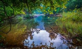 Koh ζούγκλα Sok Στοκ φωτογραφίες με δικαίωμα ελεύθερης χρήσης