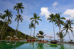 Koh Chang Island. Coconut trees over a sandy white beach stock photos