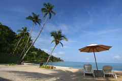 Koh Chang Island. Coconut trees over a sandy white beach royalty free stock photography