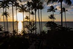 KOH CHANG, THAILAND-Schattenbild der Kokosnuss Lizenzfreie Stockfotografie