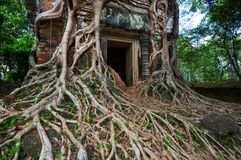 Koh Ker. Ancient  temple Koh Ker,Cambodia Royalty Free Stock Images