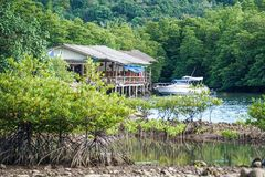 Koh kood island, south of thailand, pier blue water sea sand stones mangrove forest, ship. Koh kood island, south of thailand pier blue water sea sand stones stock photos