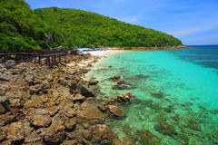 Koh Larn island tropical beach in Pattaya city Royalty Free Stock Images