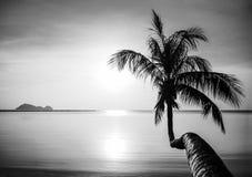 Koh Phangan island. Sea sunset in Koh Phangan island, Thailand royalty free stock image