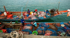 Koh Samui - Таиланд - 01-30-2017 Взгляд рыбацких лодок и рыболова в гавани Koh Samui, Таиланда Стоковое фото RF