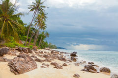 Koh Samui beach. With palm trees and white sand Royalty Free Stock Photos