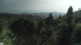 Beautiful tropical vegetation of Paradise Park Farm Samui stock footage video. Koh Samui Island, Thailand - June 19, 2017: Beautiful tropical vegetation of stock video