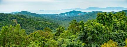 Koh Samui jungle panorama stock photo