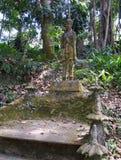 Koh Samui, Magic Garden Royalty Free Stock Photos