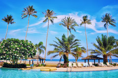Koh Samui summer resort. Turquoise swimming pool, blue sea and palm trees in Thailand royalty free stock photography