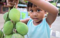 KOH SAMUI-SURATTHAI, 21 THAILAND-APRIL: De kindeilandbewoner die een bos van mango houden toont aan toeristen op 21,2017 APRIL royalty-vrije stock afbeeldingen