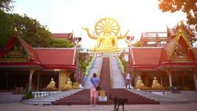 Koh Samui, Tailândia 18 de julho de 2014 Ouro da Buda vídeos de arquivo