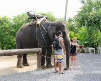 KOH SAMUI TAJLANDIA, PAŹDZIERNIK, - 23, 2013: Chłopiec i dziewczyna fotografujący z słoniem Zdjęcia Stock