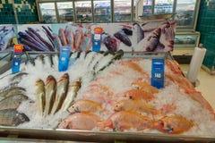 KOH SAMUI, THAILAND - 13. Dezember 2017: Großer c-Supercenter Verschiedene Arten von den Fischen gezeichnet auf Eis Lizenzfreie Stockfotos