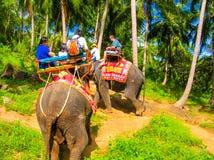 Koh Samui Thailand - Juni 21, 2008: Turister som rider elefanter Royaltyfria Foton
