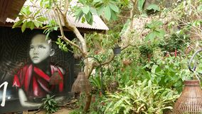 KOH SAMUI, THAILAND - 8 MAY 2019. Tropical Garden. Green plants growing near wall with graffiti of little monk in yard. Of modern exotic paradise resort in stock footage