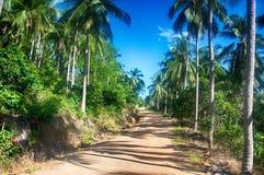 Koh Samui tropisk skog Royaltyfria Foton