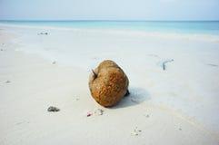 Koh Tachai, Phang Nga - Thaïlande Image stock