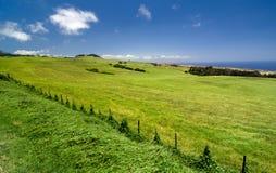Kohala Mountain Highway between Hawi and Waimea Royalty Free Stock Images