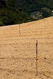 Kohlbauernhof nach Ernte Lizenzfreies Stockbild