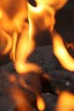 Kohlen auf Feuer lizenzfreies stockbild
