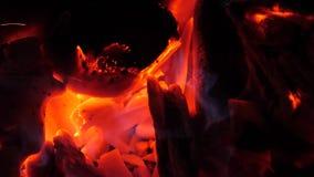 Kohlen des Holzes glühen mit Feuer rot Feuer in den Wäldern Nahaufnahme stock footage