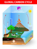 Kohlenstoffzyklus. Vektordiagramm Lizenzfreie Stockbilder