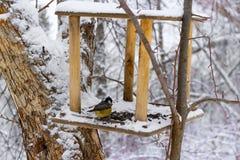 Kohlmeise Parusmajor im schneebedeckten Wald lizenzfreie stockbilder