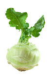 Kohlrabi. Stock Photos