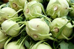 Kohlrabi Royalty Free Stock Images