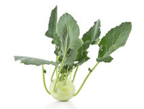 Kohlrabi with clipping path Stock Image
