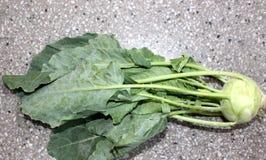 Kohlrabi, knol khol. Ganth gobhi, Brassica oleracea var gongylodes, vegetable crop with globose swollen stem base, stem and leaves used as vegetable royalty free stock photos
