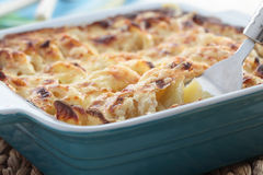 Kohlrabi and potato gratin Stock Photo