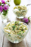 Kohlrabi salad Royalty Free Stock Photo