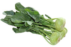 Kohlrabi Turnip Stock Photos