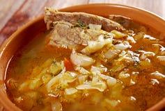Kohlsuppe mit Fleisch Lizenzfreies Stockfoto