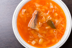 Kohlsuppe Traditionelle russische Küche Lizenzfreie Stockfotos