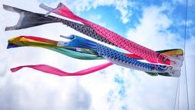 Koi鱼旗子日本儿童` s天,它在身体好标志的` s手段 库存照片