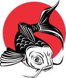 Koi carp fish stock illustration